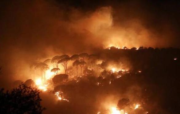 حريق سوريا ولبنان صورة من حريق غابة في قرية الشبانية بلبنان