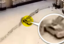 مكة الحرم المكي لحظة اصطدام سيارة بأسوار والبوابة الكبيرة السعودية فيديو