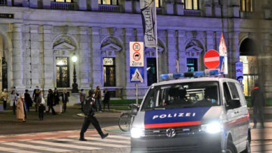 ماذا حدث في فيينا